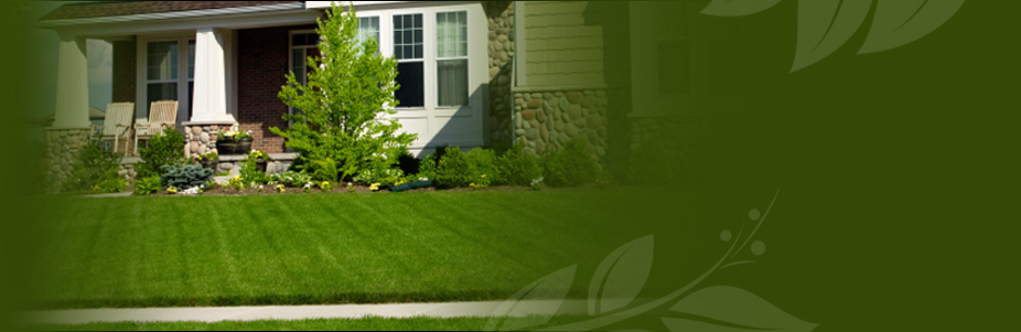 Premium Lawn Service is a full service lawn care specialist.          	From planting shrubs to mowing your yard to fertilizing your lawn, we do it all!